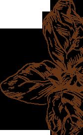 Mákos kókusztejszínes tápióka